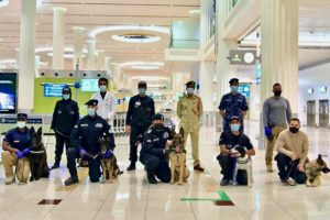 COVID-19 sniffer dogs at Dubai International Airport